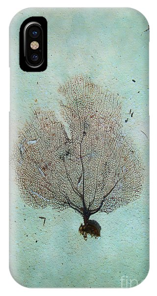 Lone Sea Fan IPhone Case