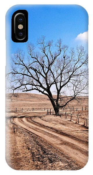 Lone Tree February 2010 IPhone Case