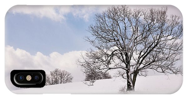 Lone Tree In Snow IPhone Case