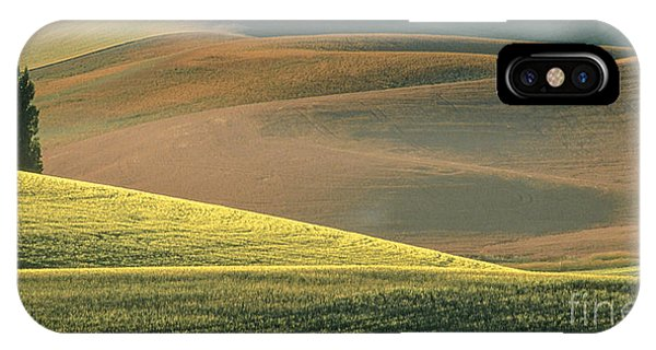 Lone Tree In The Palouse  IPhone Case