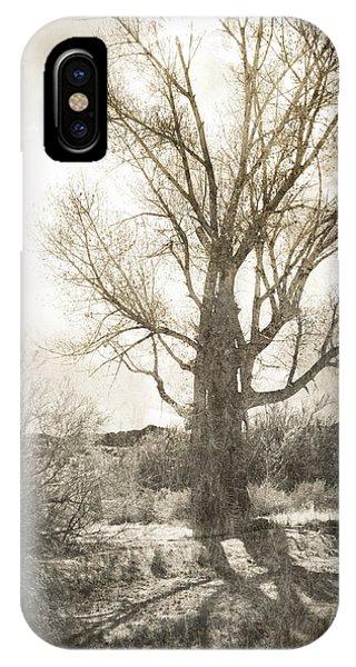 Lone Tree IPhone Case
