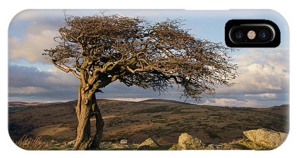 Lone Tree On Dartmoor IPhone Case