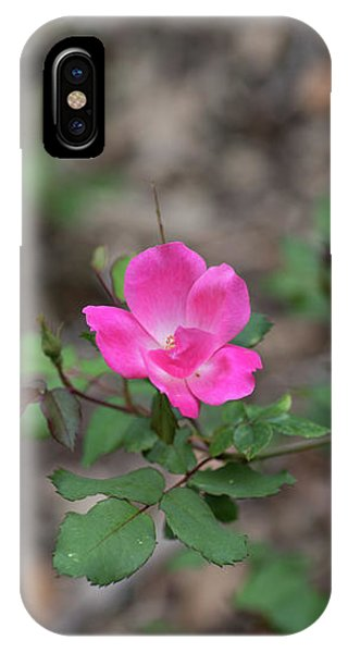 Lonely Pink Flower IPhone Case