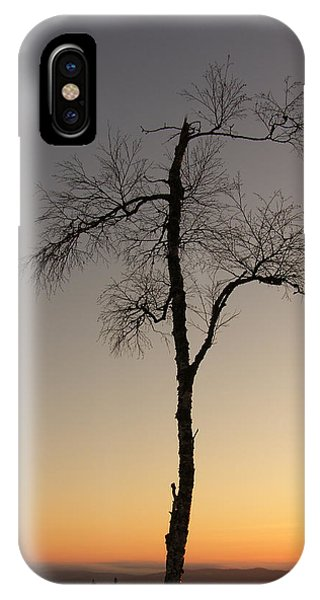 iPhone Case - Lonely Tree by Are Lund
