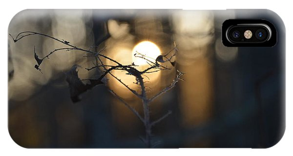 Lonely Tree Branch With Bokeh Love -georgia IPhone Case