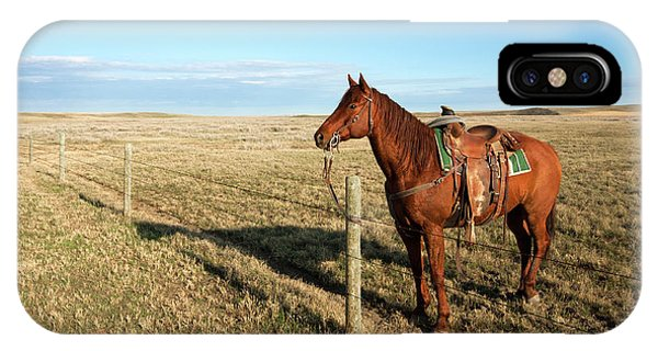 Lonesome Horse IPhone Case