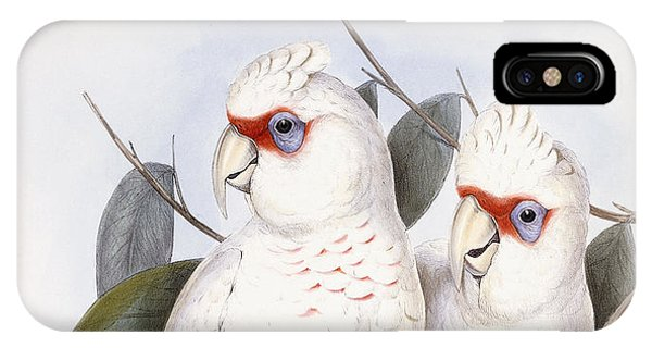 Long-billed Cockatoo IPhone Case