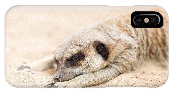 Long Day In Meerkat Village IPhone Case