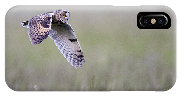 Long Eared Owl Hunting At Dusk IPhone Case