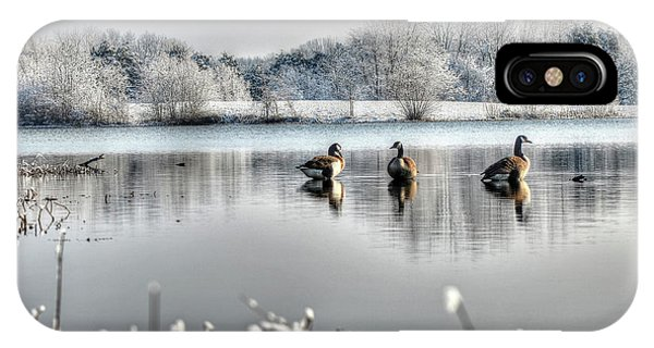 Geese At Long Run Pond IPhone Case
