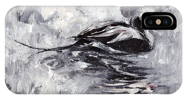 Long-tailed Duck IPhone Case