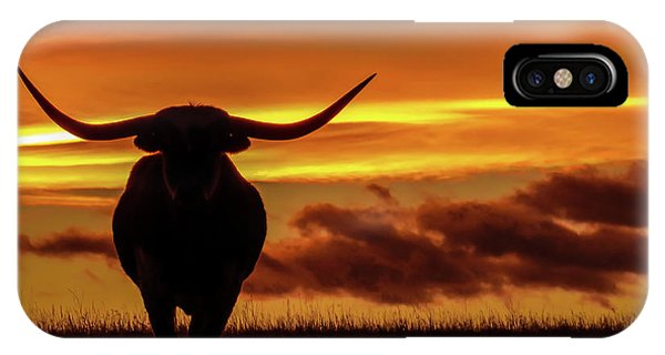 Longhorn At Sunset IPhone Case