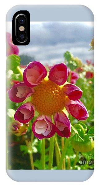 Look At Me Dahlia IPhone Case