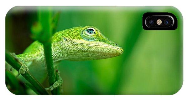 Look Up Lizard IPhone Case