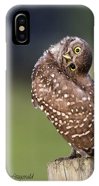Look What I Can Do IPhone Case