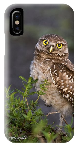 Look Who Is Up Early IPhone Case