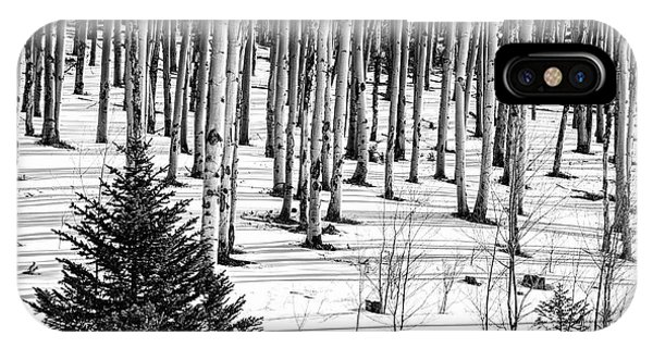 Looking Through The Aspen Black And White IPhone Case