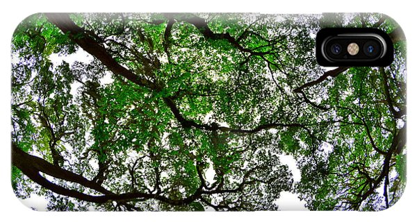 Looking Up The Oaks IPhone Case