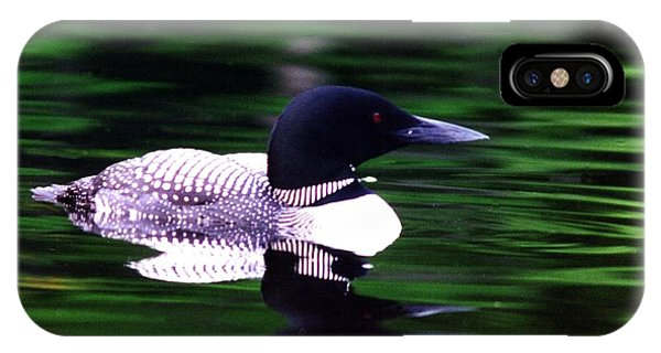 Loon On The Lake IPhone Case