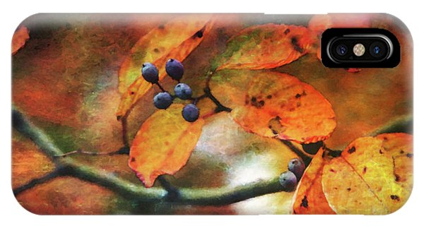 Lost Autumns Beauty 6570 Ldp_2 IPhone Case