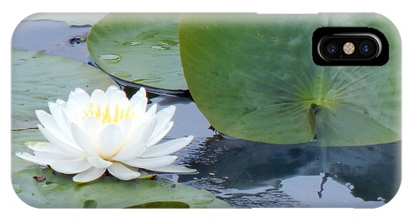 Lily And Leaf IPhone Case