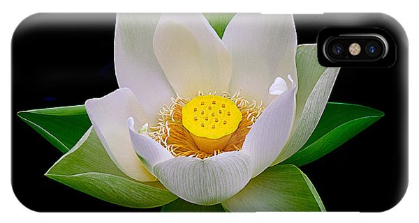 Lotus Blooming IPhone Case