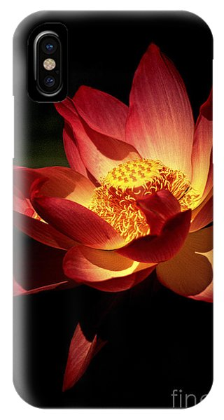 Lotus Blossom IPhone Case