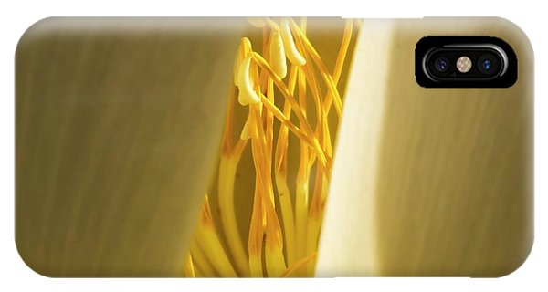 IPhone Case featuring the photograph Lotus Flower 3 by Buddy Scott