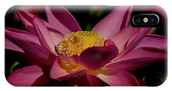 IPhone Case featuring the photograph Lotus Flower 7 by Buddy Scott
