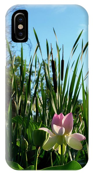 IPhone Case featuring the photograph Lotus Landscape 2 by Buddy Scott