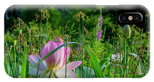 IPhone Case featuring the photograph Lotus Landscape 3 by Buddy Scott