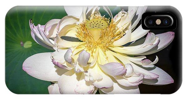 Lotus Flower IPhone Case