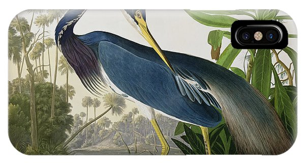 James iPhone Case - Louisiana Heron by John James Audubon