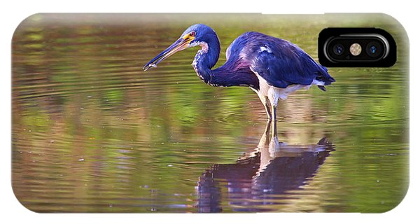 Louisiana Heron IPhone Case