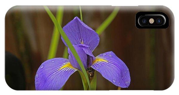 Louisiana Native Iris IPhone Case