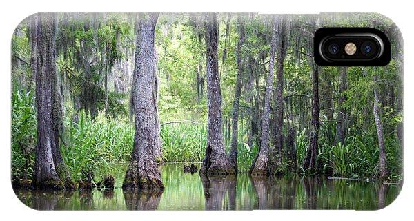 Louisiana Swamp 5 IPhone Case