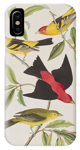 Scarlet iPhone Case - Louisiana Tanager Or Scarlet Tanager  by John James Audubon