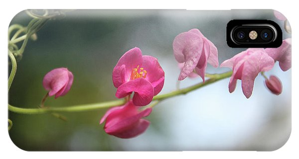 Love Chain2 IPhone Case
