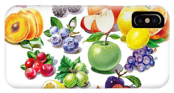 Grapefruit iPhone Case - Love Fruits And Berries by Irina Sztukowski