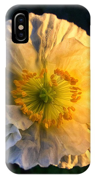Love In The Morning IPhone Case