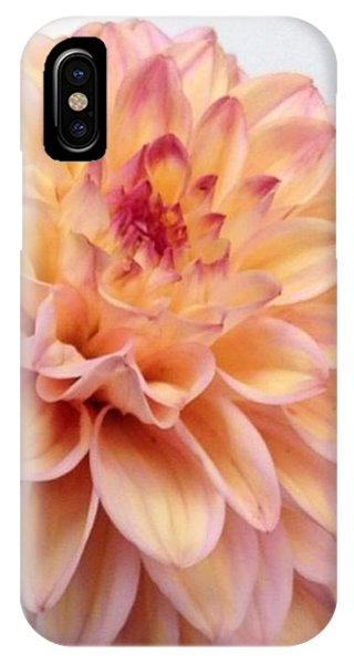 Florals iPhone Case - Dahlia Flower Bouquet by Blenda Studio