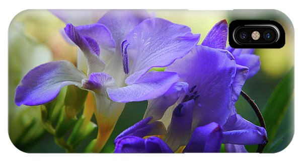 IPhone Case featuring the photograph Lovely Freesia's by Lance Sheridan-Peel