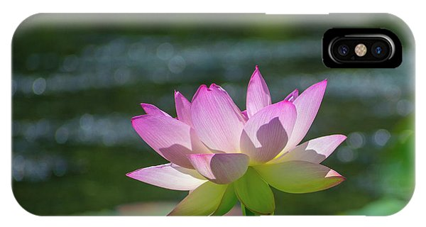 Lovely Lotus In Pink IPhone Case