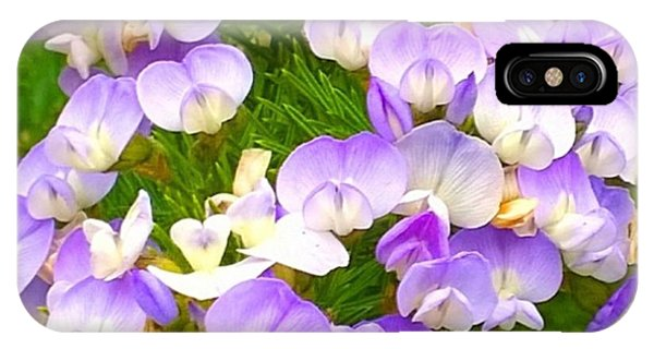 Color iPhone Case - Lovely #purple #flowers Beg Your by Shari Warren