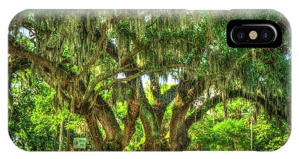 Lovers Oak Live Oak Tree Brunswick Georgia Art IPhone Case