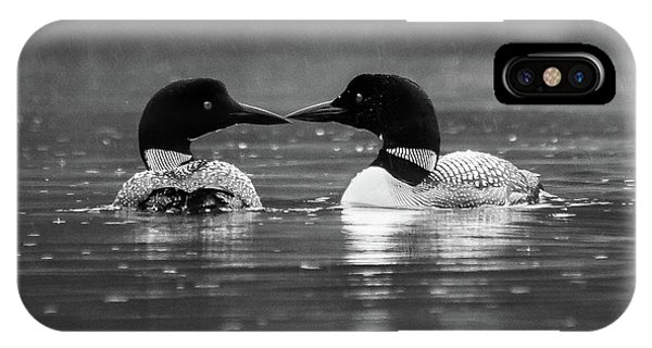 IPhone Case featuring the photograph Loving Loons by Darryl Hendricks