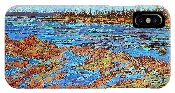 Low Tide Oak Bay Nb IPhone Case