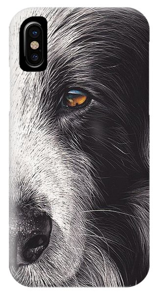 Loyal Companion IPhone Case