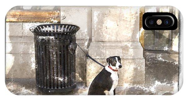 Loyal Dog IPhone Case