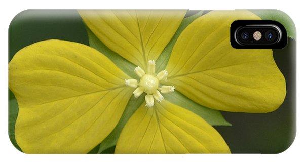 Lucky Four Leaf Flower IPhone Case